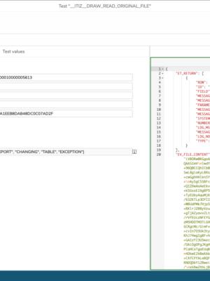 sap_erp_document_read_orginal_file