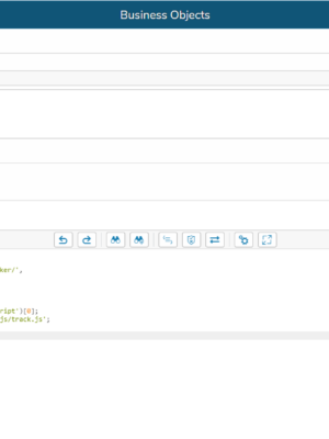 CSBO_ SAP_WebAnalyticsCode